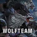 WOLFTEAM icon